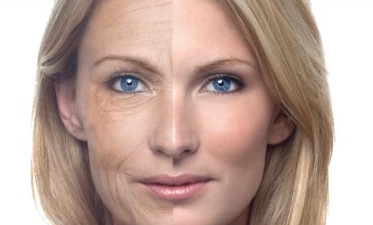 Anti-Aging: Zellverjüngung