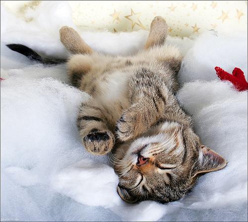 Entspannung zum Einschlafen: Eine Übung