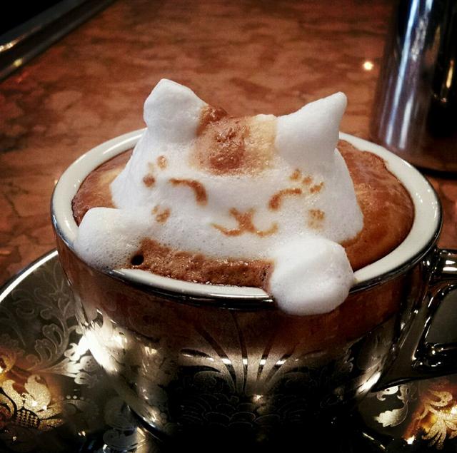 Kaffee und seine Wirkung auf den menschlichen Organismus