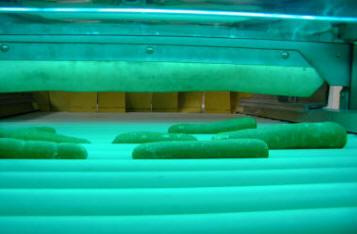 Bestrahlung von Lebensmitteln: tatsaechlich sind einige unzulaessig bestrahlt