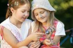 Diabetes I – Kinderdiabetes, Projekte gesucht – Fine Star