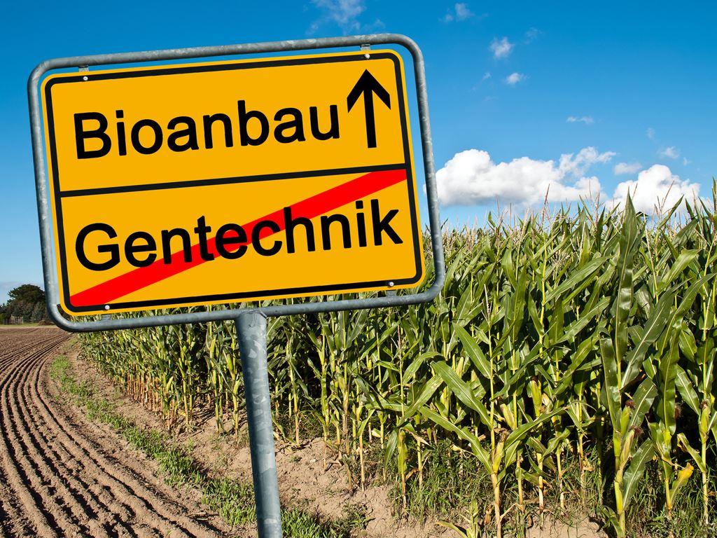Gentechnik, Pflanzenanbau: neues Gesetz, Mindestabstand