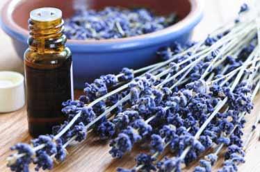 Lebensfreude foerdern: Entspannungsmethoden, Aromatherapie