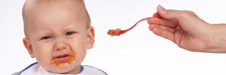Babynahrung/Babybrei – Unnötige Geschmacksvielfalt?