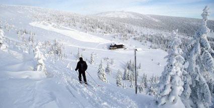 Natürlich Gesund durch Apres Ski
