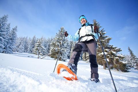 Viel gesunder Wintersport